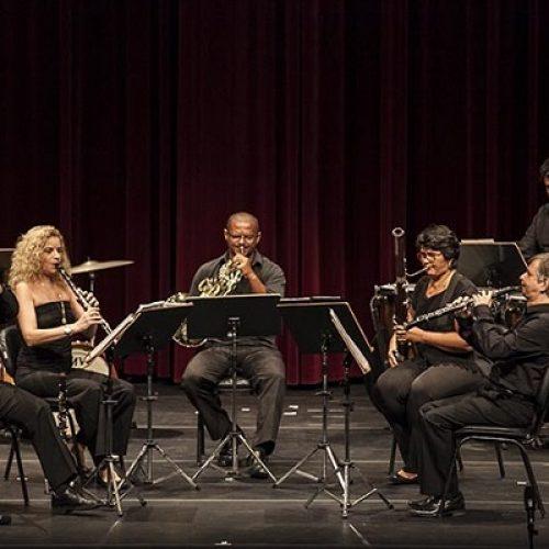 Camerata Opus Lumen é atração do Projeto Terças Musicais