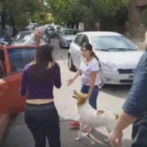 VÍDEO: Mulher tenta abandonar cão em rua e motoristas se revoltam, assista