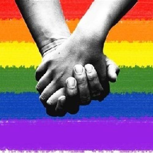 Comissão do Senado faz audiência pública no Dia de Combate à Homofobia