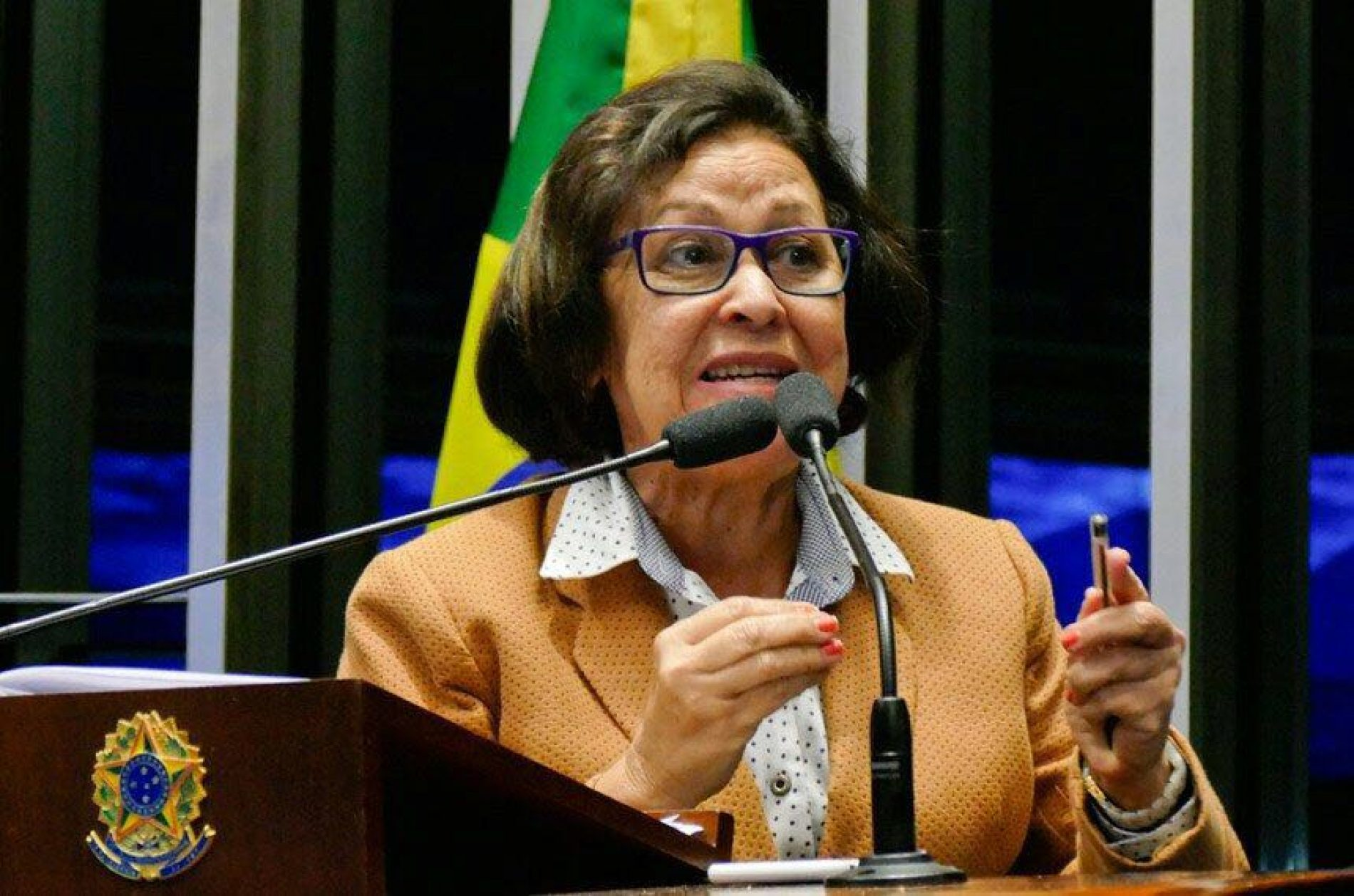 Lídice da Mata exorta Senado a buscar saídas para a crise do país
