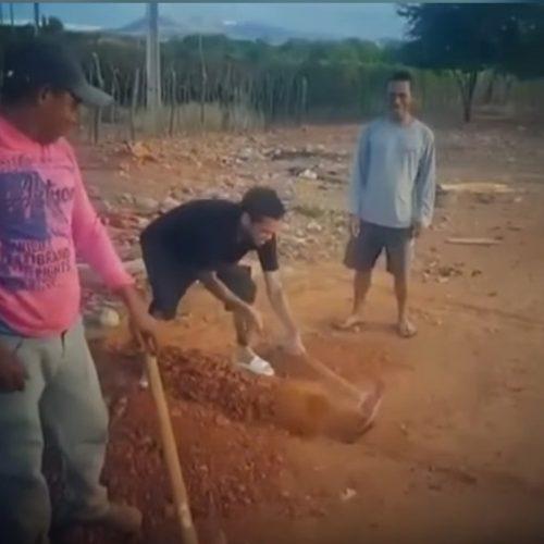 De volta a Juazeiro, na Bahia, Daniel Alves aceita desafio e ara terra