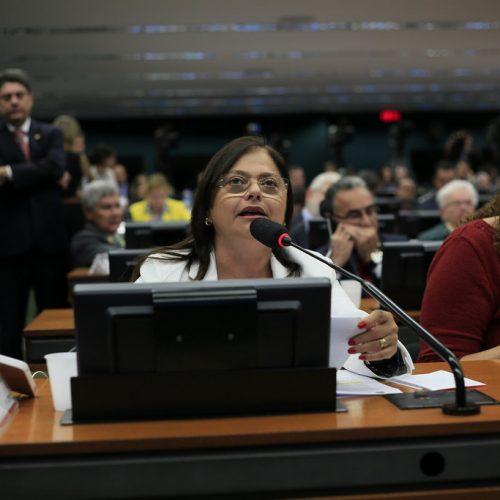 """""""A cada momento que Temer permaneça na Presidência são mais direitos defenestrados"""", diz líder Alice na CCJC"""
