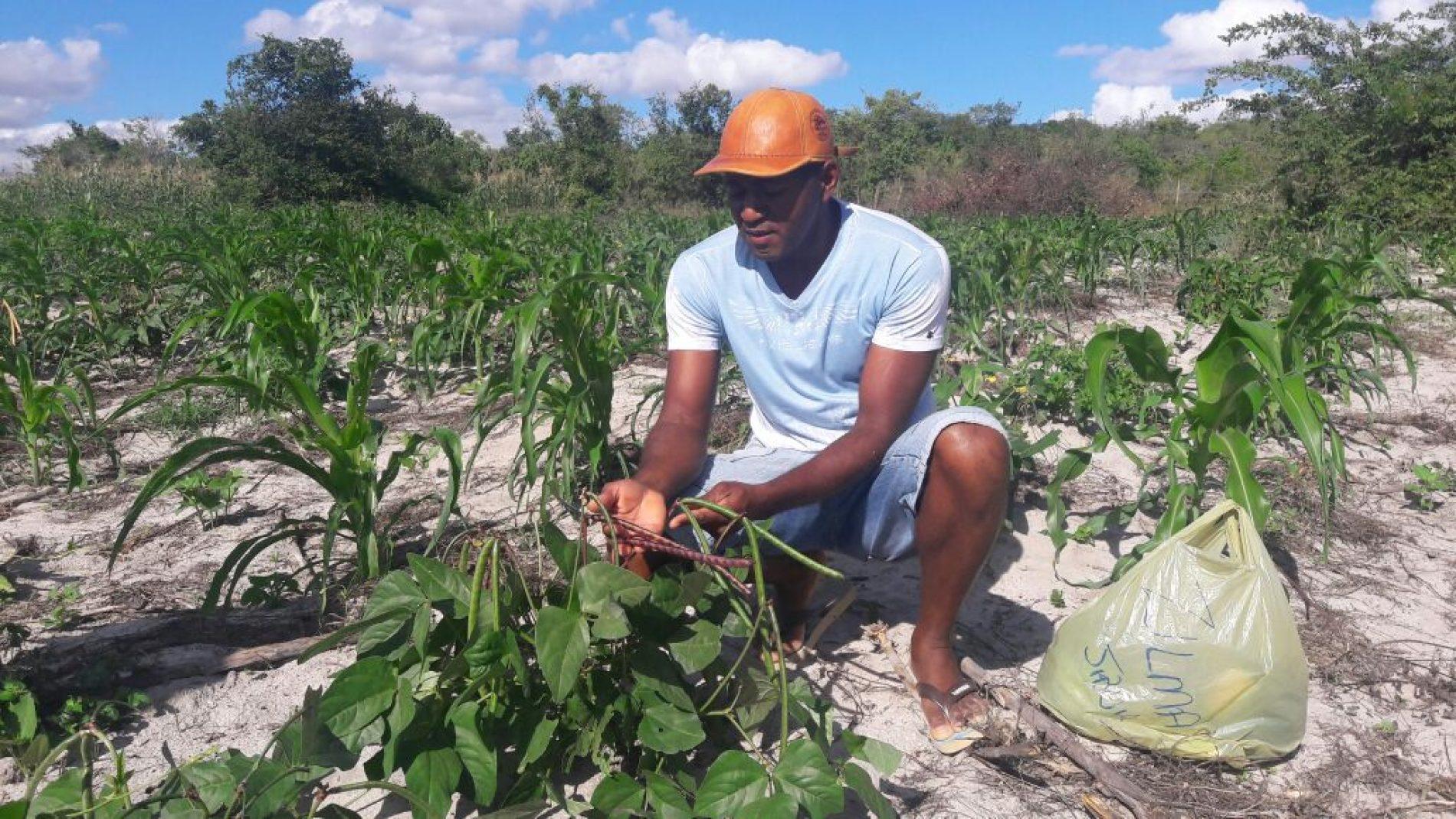Deputado condena violência agrária, que fez mais uma vitima na Bahia