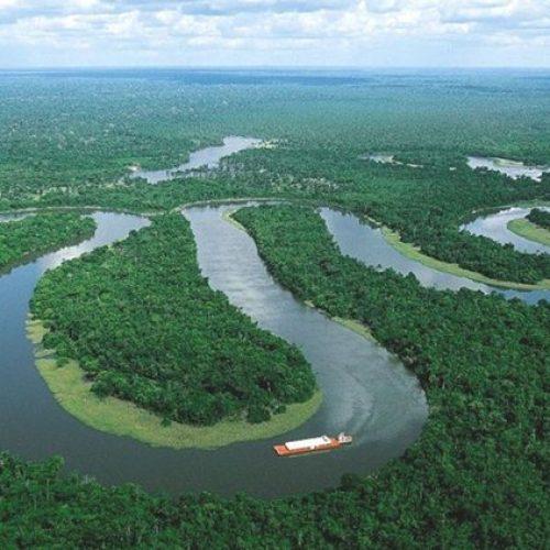 Governo apresenta projeto de lei que reduz floresta na Amazônia em 36%
