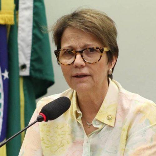 Líder do PSB adota tom pacificador e acredita em retomada do diálogo