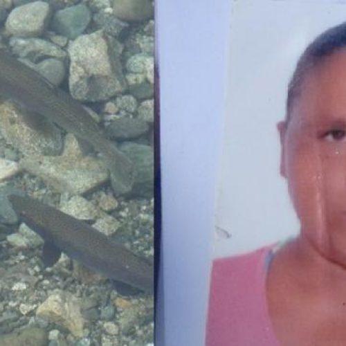 Feira de Santana: Vizinho mata gari com seis tiros por causa de dois peixes