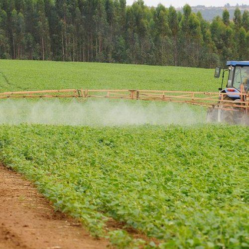 Agricultura vai liberar R$ 90 milhões para seguro rural do segundo semestre