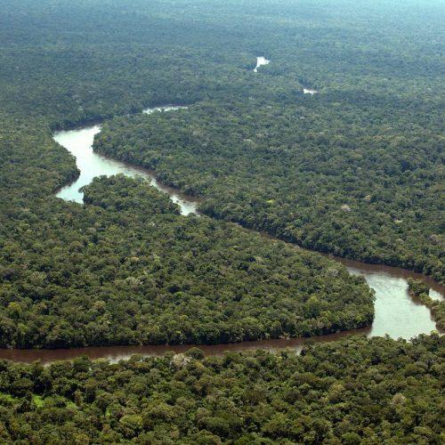 Temer revoga decreto sobre reserva ambiental, mas deve manter extinção da Renca