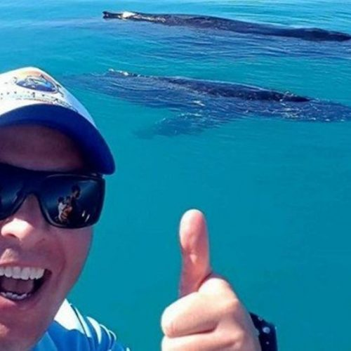 Mergulhador nada por três horas para fugir de tubarão