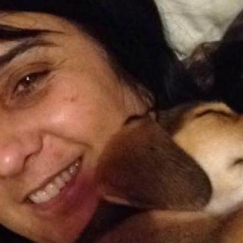"""Cachorra morre de """"tristeza"""" 20 dias após dona falecer"""