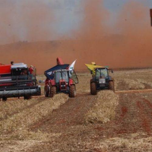 IBGE estima queda de 9,2% na safra de cereais de 2018