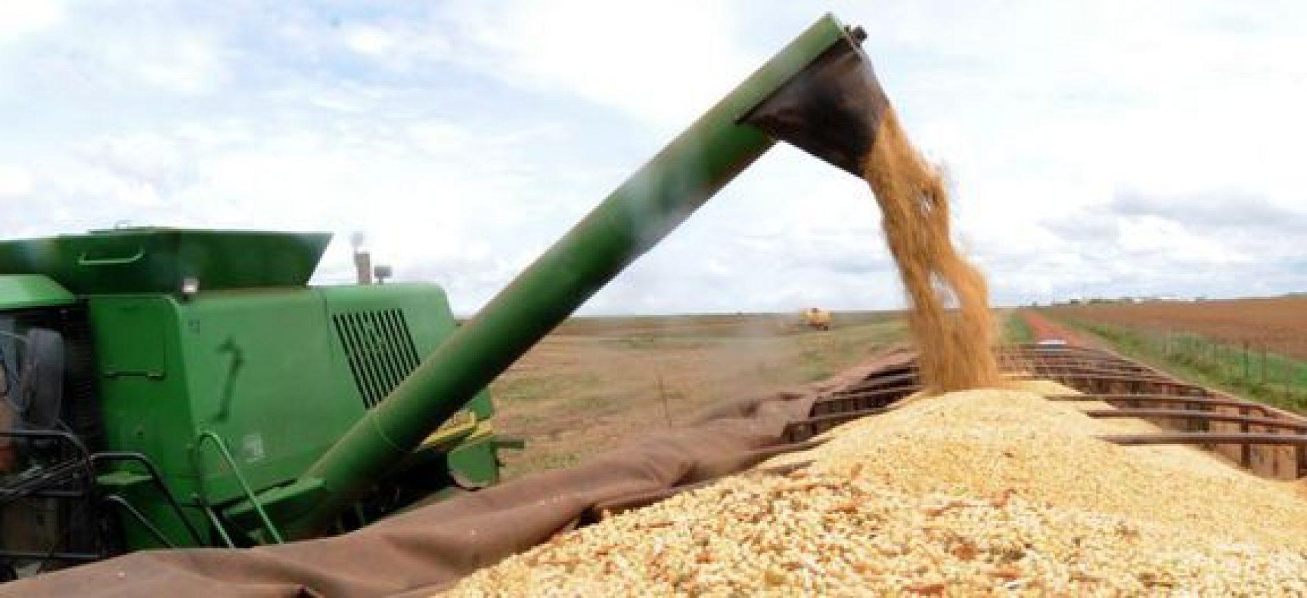 Valor da produção agropecuária brasileira deve ter queda de 5,2% em 2018