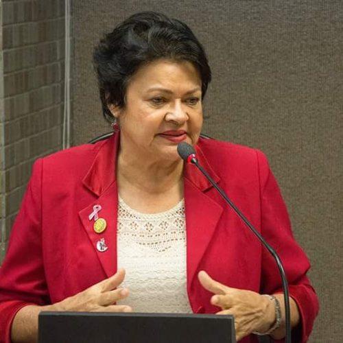 'Habeas corpus à New Hit afronta o 08 de Março', diz Luiza Maia