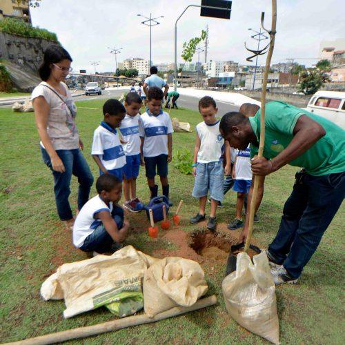 Com participação de crianças, novas árvores são plantadas em compensação ao BRT