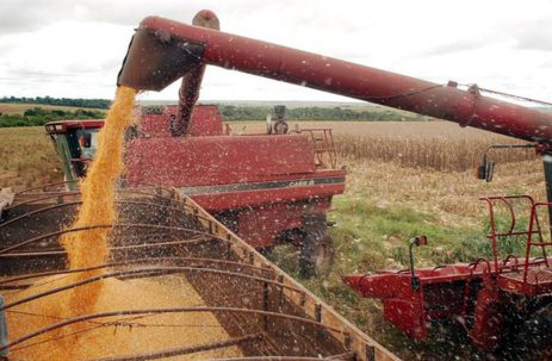 Saldo da balança do agronegócio em junho é de US$ 8,17 bilhões