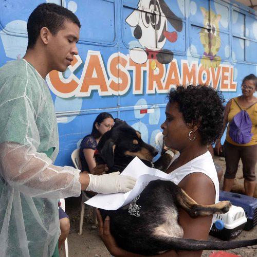 Salvador: Castramóvel realiza atendimento no Imbuí a partir de segunda