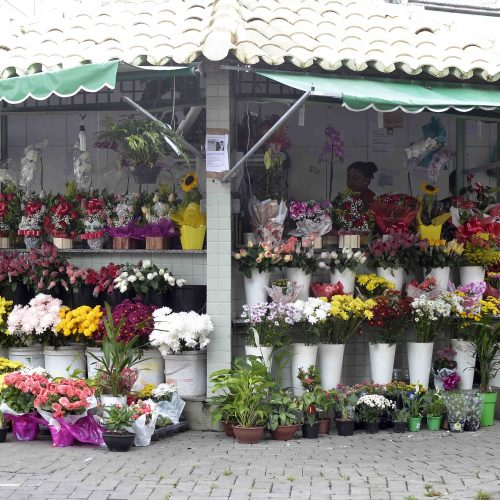 Camaçari: Sedap promove Feira da Primavera entre os dias 17 e 21