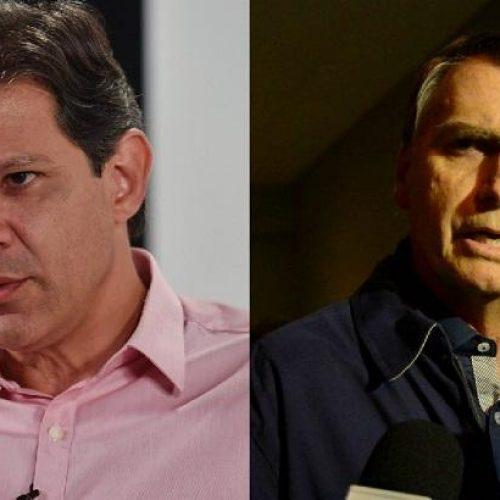 Pesquisa XP/Ipespe: Bolsonaro (58%) e Haddad (42%) mantêm posições