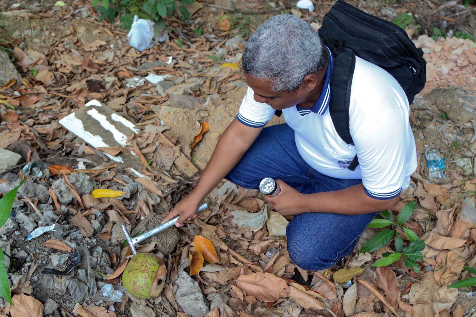 Casos de dengue aumentam em mais de 100% em Feira de Santana