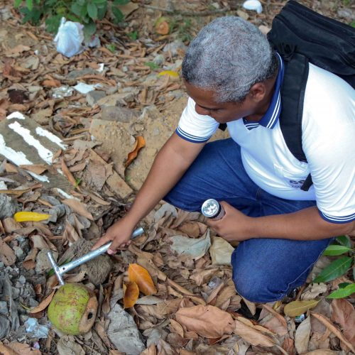 Equipes do CCZ visitam 20 mil domicílios em ação de combate à dengue