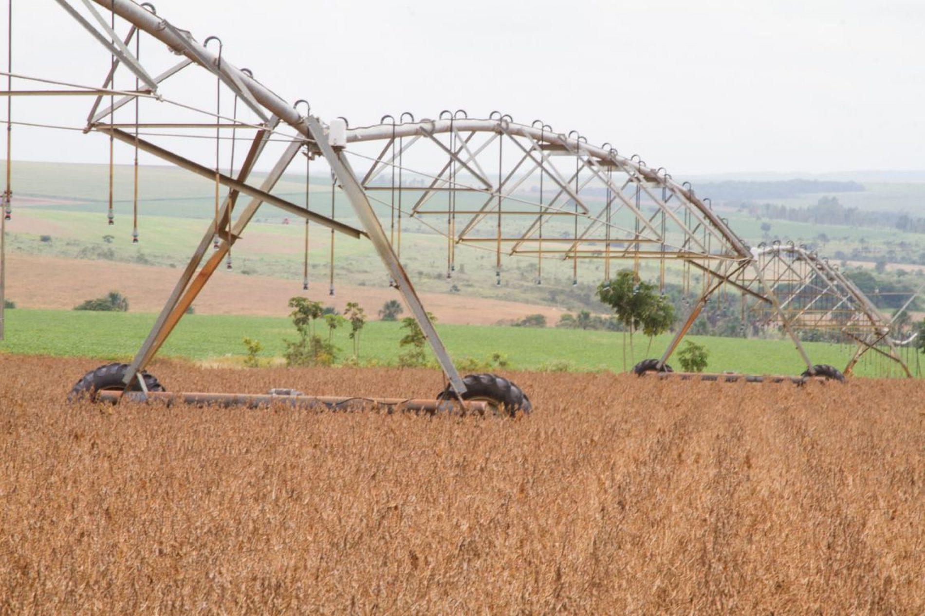 Brasil pode encerrar 2018 com recorde na exportação de soja