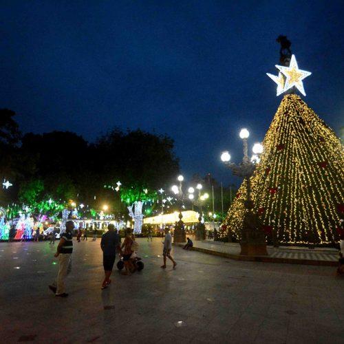 Campo Grande tem atrações especiais de Natal no fim de semana