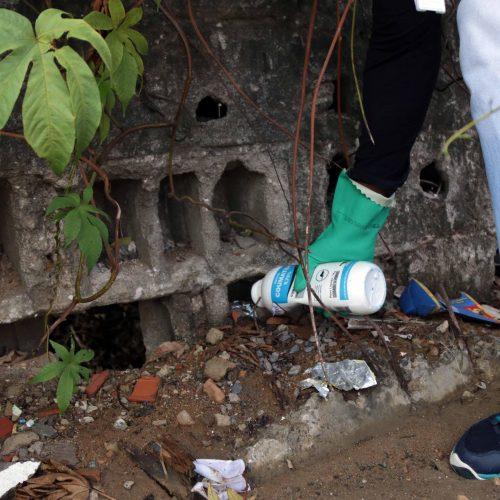Salvador: Centro de Controle de Zoonoses intensifica ações de verão