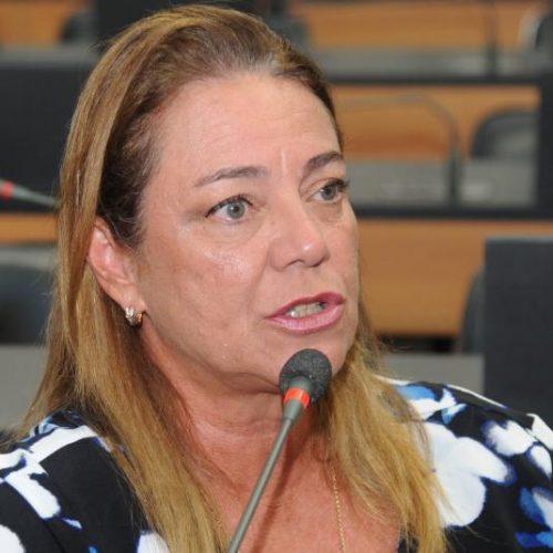 Fabíola Mansur apresenta moção de repúdio ao decreto de Jair Bolsonaro que extingue conselhos